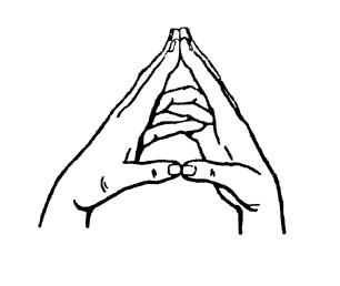 МУДРА: «ПАРЯЩИЙ ЛОТОС»